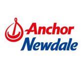 anchor2019